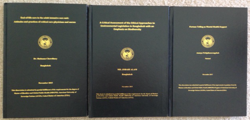 phd thesis on public administration